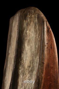 Bouclier de guerre, war shield, oceanic art, primitive art, papua new guinea