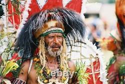 Coiffe de danse en plumes, dancing headdress, papua new guinea, oceanic art