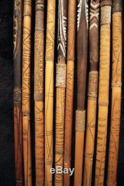 Group of 10 Rare Hewa Arrows April River PAPUA NEW GUINEA Important Provenance