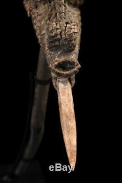 Herminette, bone adze, oceanic art, primitive art, Papua New guinea
