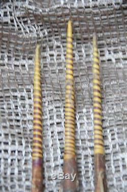 Old Papua New Guinea Solomon Islands Hunting Bow & Arrows with Fish Bone Barbs