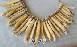 Papua New Guinea Boar Teeth Necklace Prestige Ornament Superb Ethnic Artifact