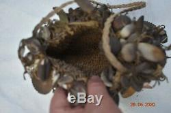 Sale! Papua New Guinea Witchdoctors Bag, Shells, Bones 15 Prov