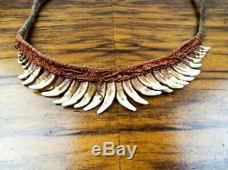 Vintage Indigenous Dog Tooth Necklace Wealth Status Samo Tribe Papua New Guinea